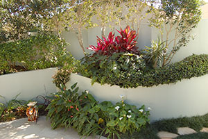 Wall Planting Bed - Private Garden by Imperial Gardens Landscape