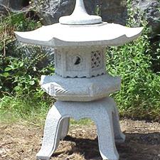 Fancy Yukimi <br> d30cm $550 <br>d45cm $750<br> d60cm $1,020<br> d75cm $1,440<br>d90cm $2,160