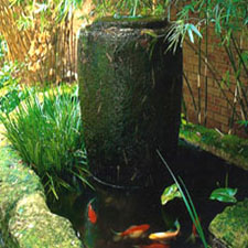 waterbowl-th
