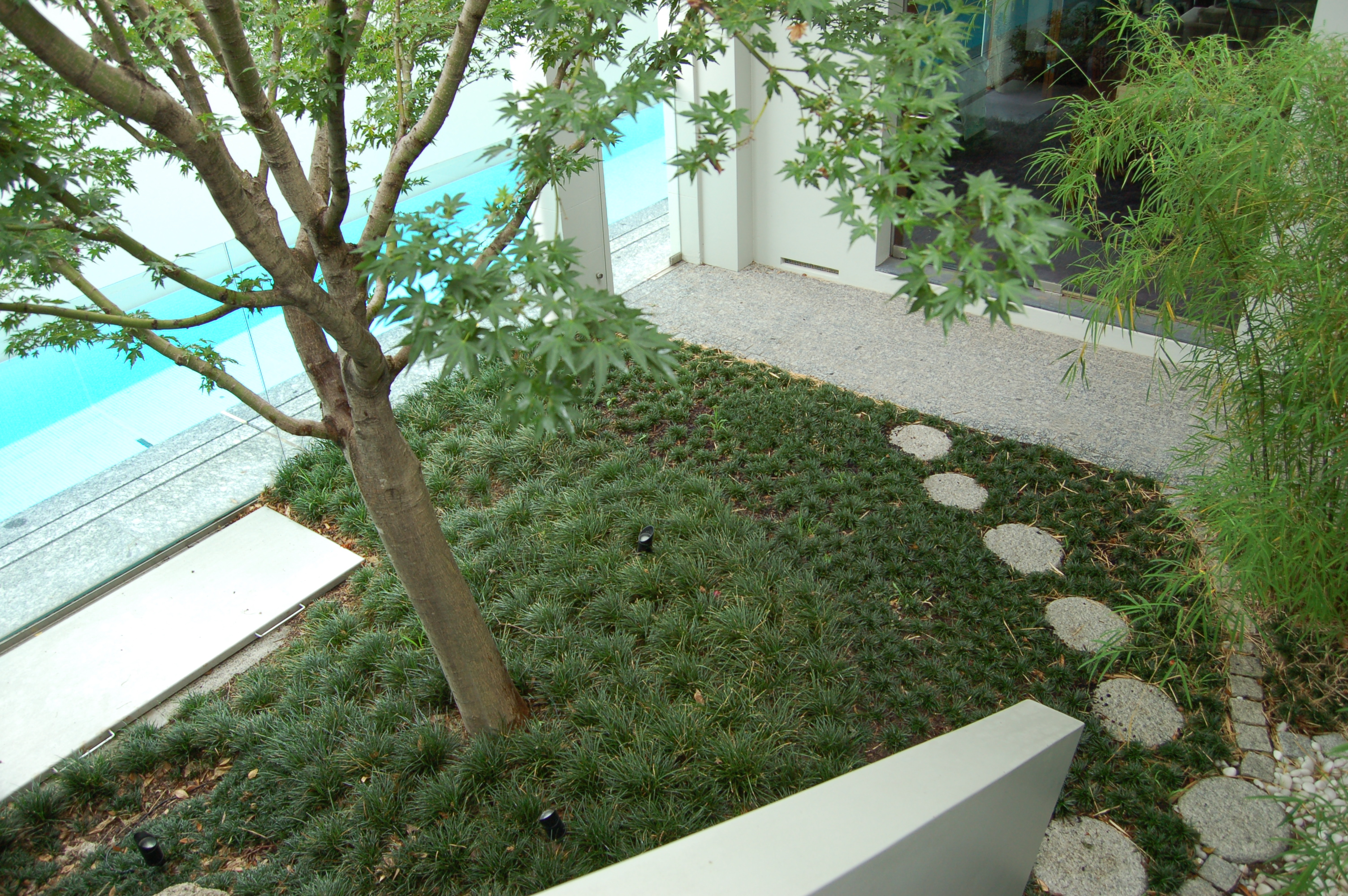 Contemporary Courtyard - Private Garden by Imperial Gardens Landscape