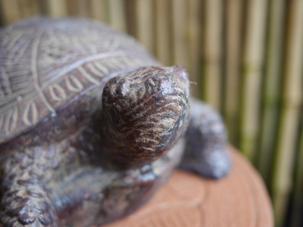 Turtle Stone Bali $55